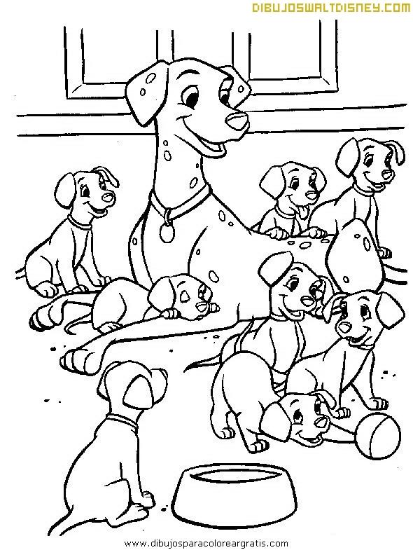 Encantadores perros Dalmatas