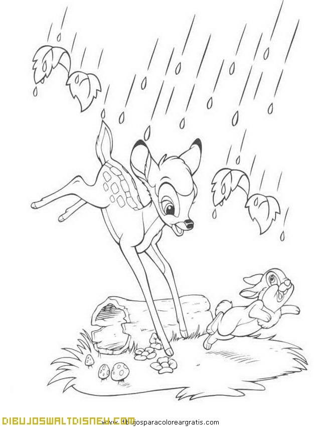 Cae la lluvia en el bosque de bambi for Cip e ciop immagini da colorare