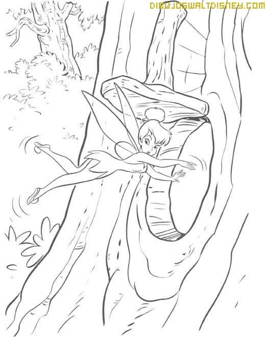 Campanilla entra en un árbol