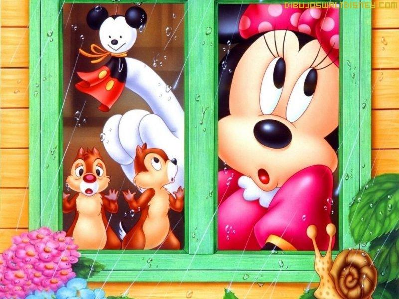 Minnie contempla la lluvia
