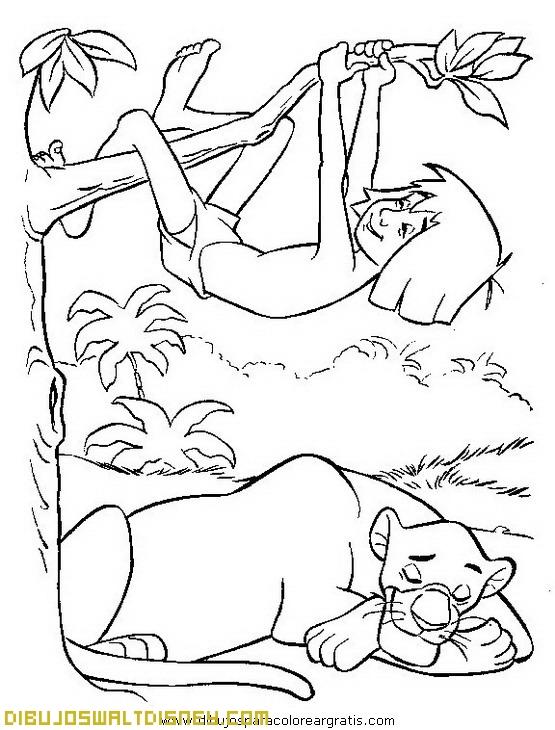 Mowgli colgado en una rama