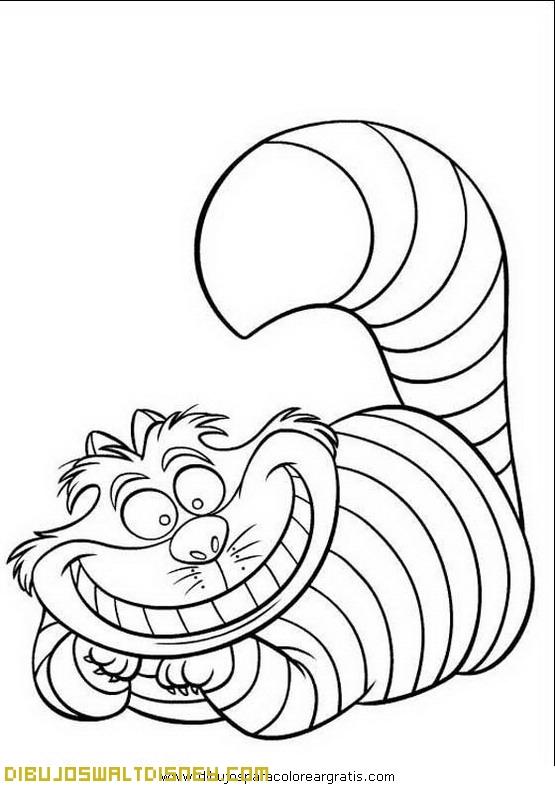 personaje de alicia en el pa237s de las maravillas
