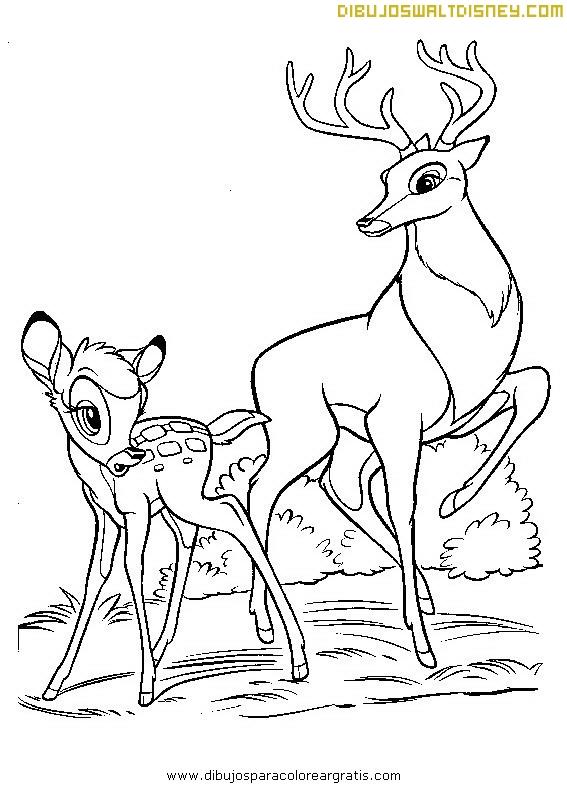 Bambi y su inseparable amigo Tambor