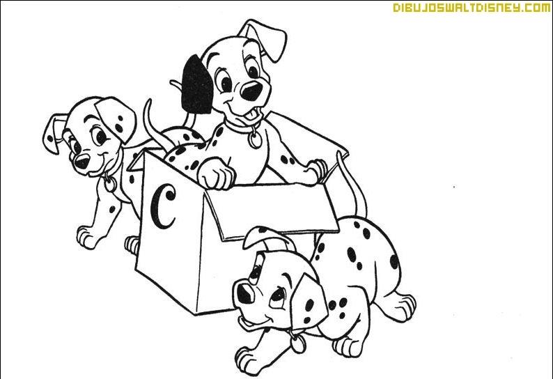 Unos cachorros de dálmata
