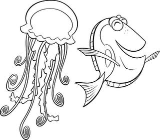 Dory y la medusa