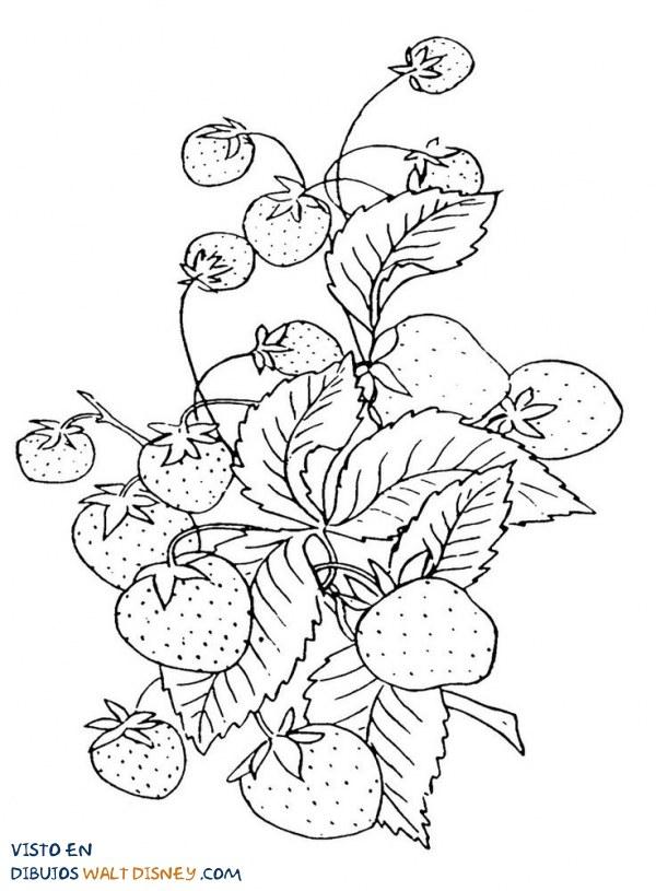 Â¿Unas fresas para compartir?