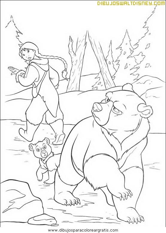 Hermano oso y amigos