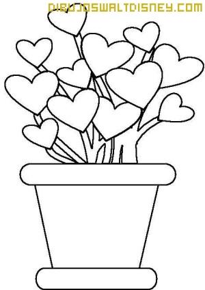Planta de corazones