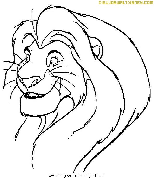 Primer plano del Rey León