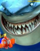 Fondo de pantalla de Nemo