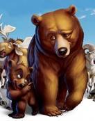 Kenai y Koda, hermanos osos