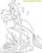 Una aventura acuática