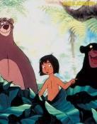 Baloo y Baghera