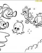 Nemo empieza el cole