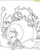 Dot y sus amigos juegan con un caracol