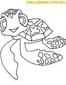 Chiki: La pequeña y atrevida tortuga te está esperando