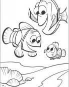 Nemo y amigos