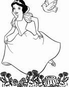 Blancanieves y el pajarito