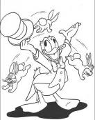 Donald hace de mago