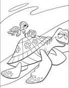Nemo y las tortugas