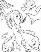 Nemo y sus amigos