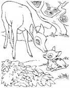 Bambi, todo ternura