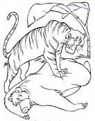 Tigre pisa a Baloo