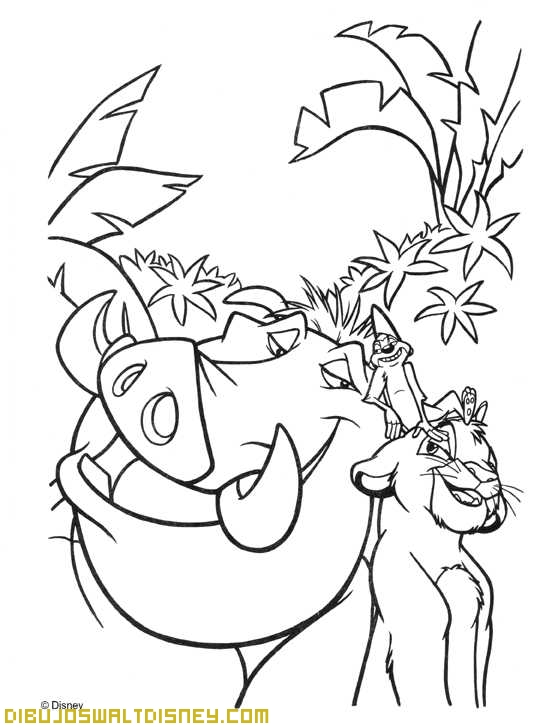 Timon y Pumba jugando con Simba