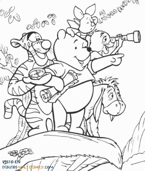 Winnie The Pooh explorador